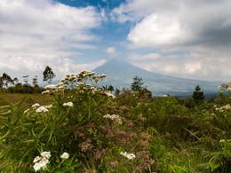 Blick auf den Cikuray-Vulkan bei Garut (c) Tobias Schorr
