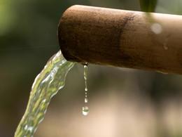 Gute Wasserqualität ist wichtig für den besten Reis. (C) Tobias Schorr