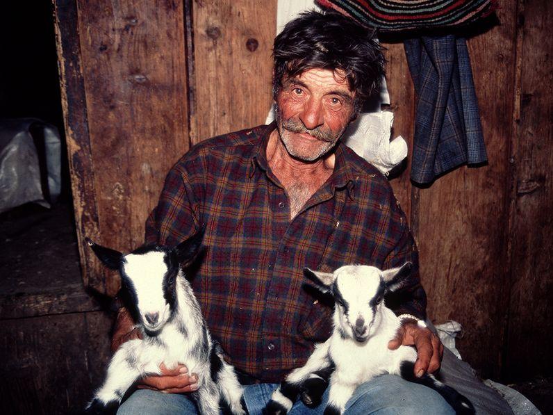 Jiorgos Dimitriou mit jungen Ziegen in seinem Gehöft in Methanas Bergen. (c) Tobias Schorr